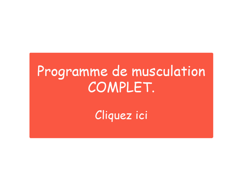 programme musuculation complet