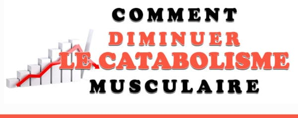 diminuer catabolisme musculaire