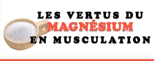 magnésium musculation