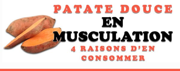 patate douce en musculation
