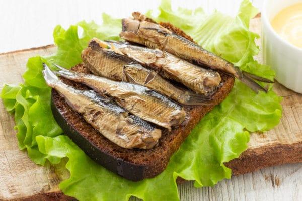 pain sardine